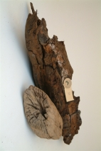 Driftwood, length: 30-200cm