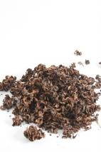 Acacia Dryflower