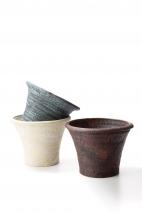 Hosta small pot